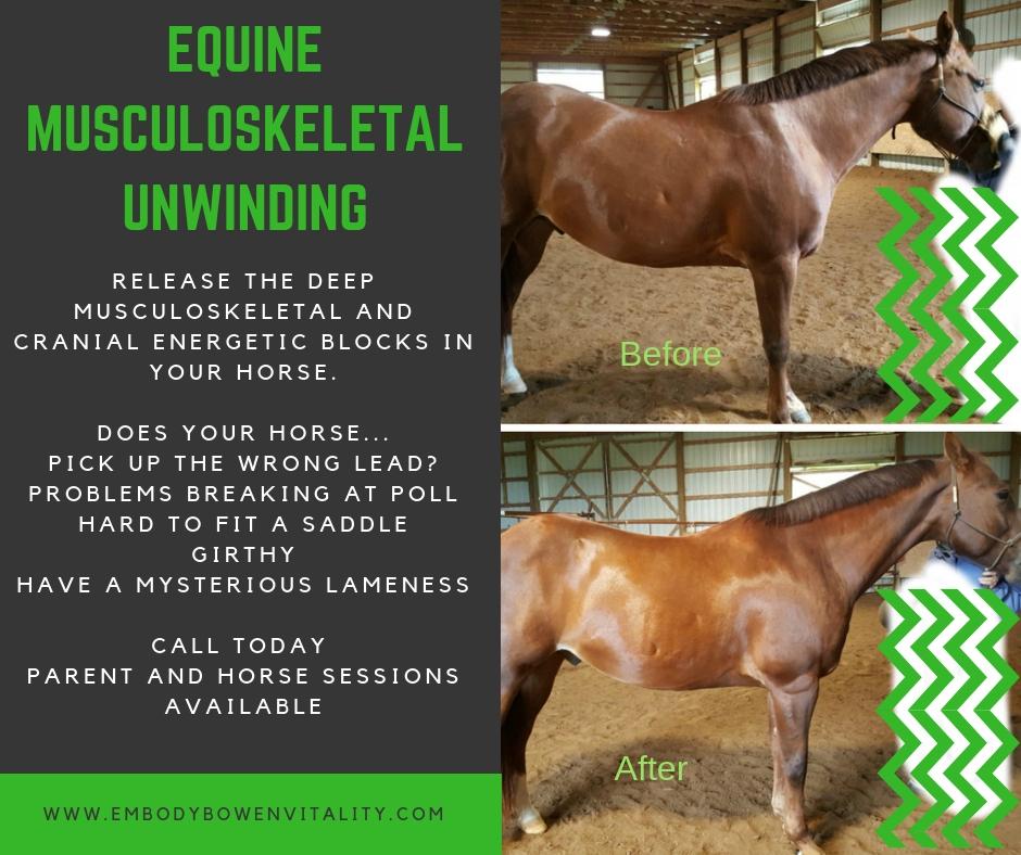 Equine Musculoskeletal Unwinding jpeg AD